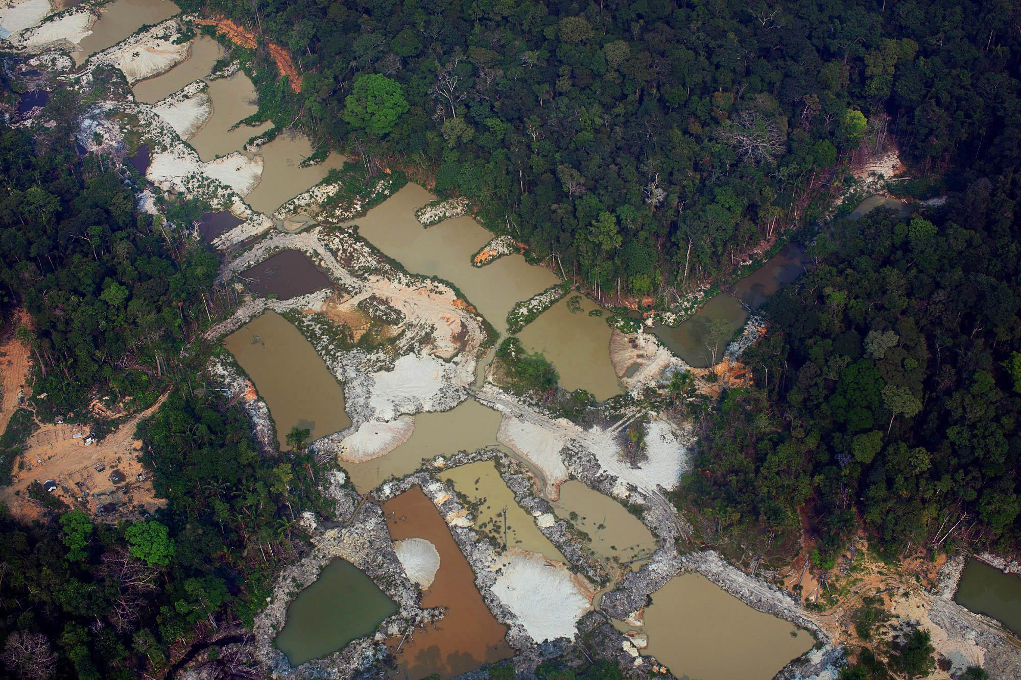Manifesto contra o projeto de lei que quer acabar com o licenciamento ambiental no Brasil